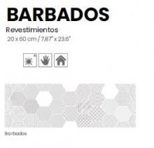 BARBADOS 20X60